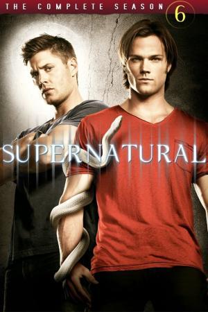 Poster for Supernatural: Season 6